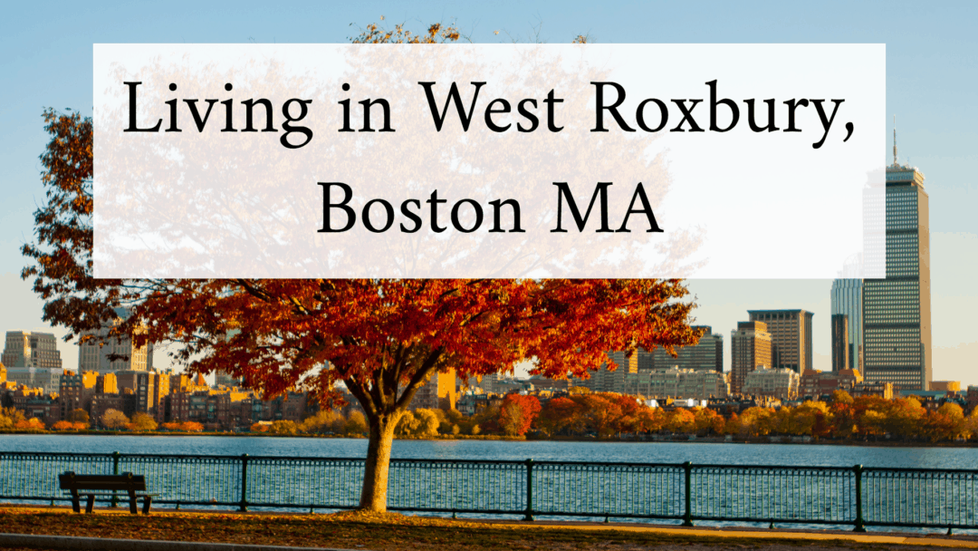 The Complete & Ultimate Guide to Living in West Roxbury, MA (2020)