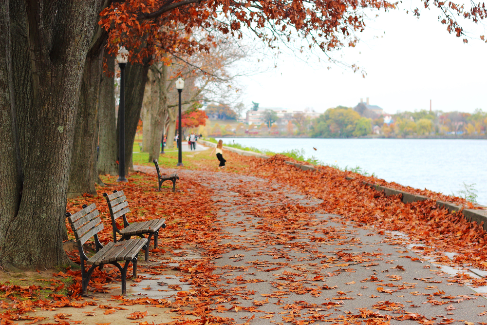 Autumn weather in Lowell, MA
