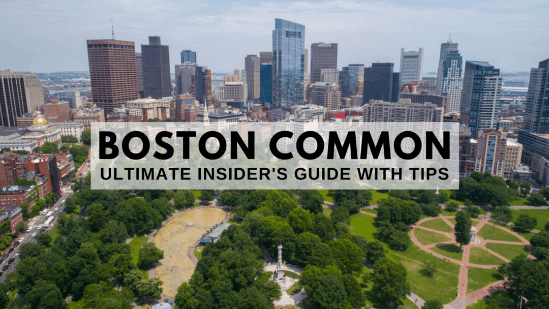 Boston Common   2020 ULTIMATE Insider's Guide With Tips   Mass Bay Movers