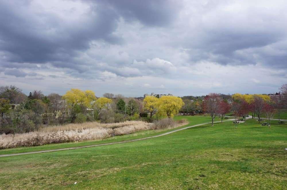 Danehy Park in Cambridge, MA